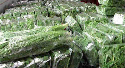 昆山市專業蔬菜供應優質公司 蘇州禾子生態食品供應