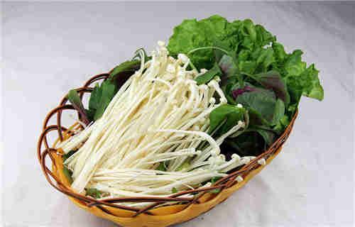 昆山市专业蔬菜供应「苏州禾子生态食品供应」