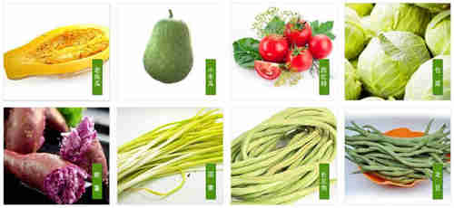 吳江區供應綠色有機蔬菜 蘇州禾子生態食品供應