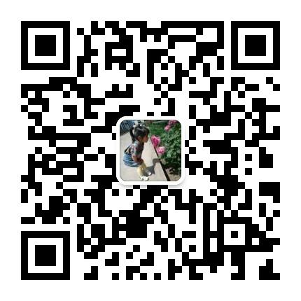 山東宸鑫自動化機械有限公司