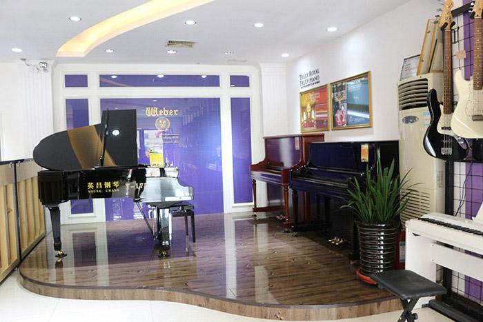 南召知名钢琴出售,钢琴