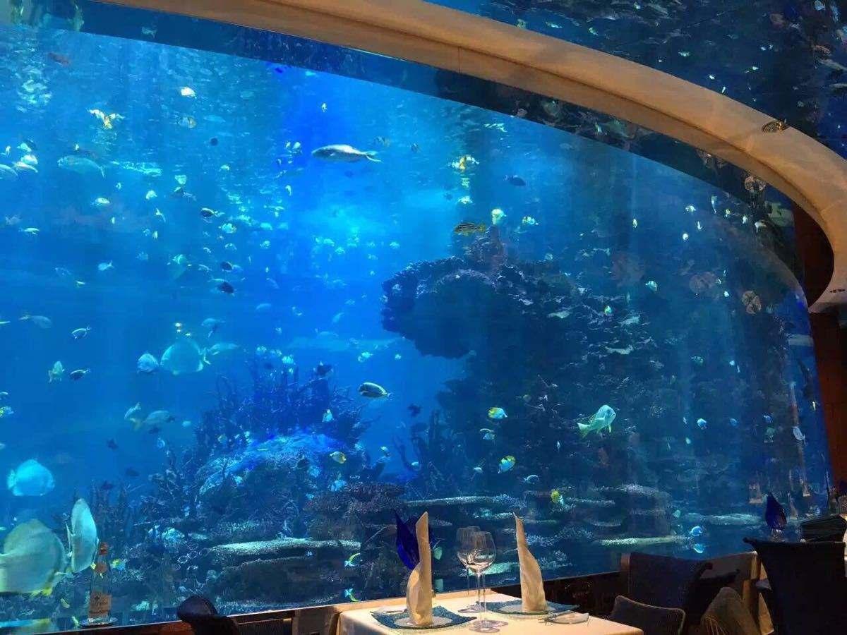 广东口碑好海洋建造性价比高 欢迎咨询「海奥供应」