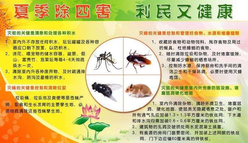 三门峡饭店除害虫报价 北京鹏辉生物科技供应