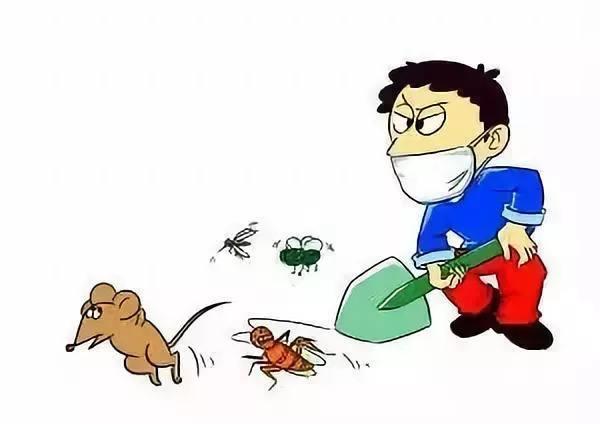 上门除蟑螂多少钱,除蟑螂