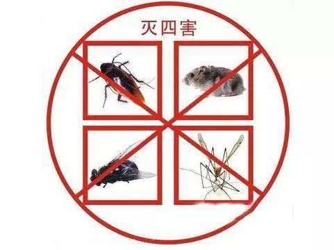 Jiaozuo Supermarket Eliminates Four Hazards Beijing Penghui Biotechnology Supply