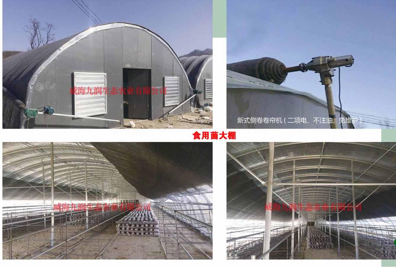 莱州正宗玻璃温室推荐厂家 诚信互利「威海九润生态农业供应」