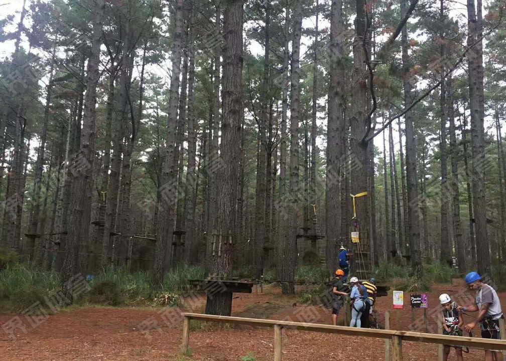 山东 网兜探险 探险塔 攀岩板 攀岩点上门服务,网兜探险 探险塔 攀岩板 攀岩点