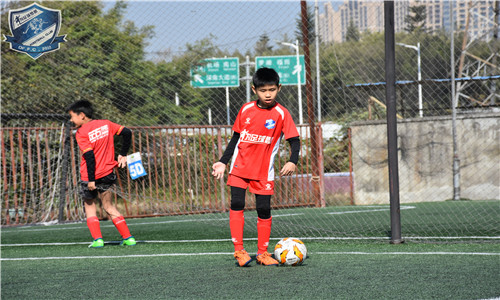深圳市龙华区知名足球培训欢迎来电「深圳市为足球梦想体育发展供应」