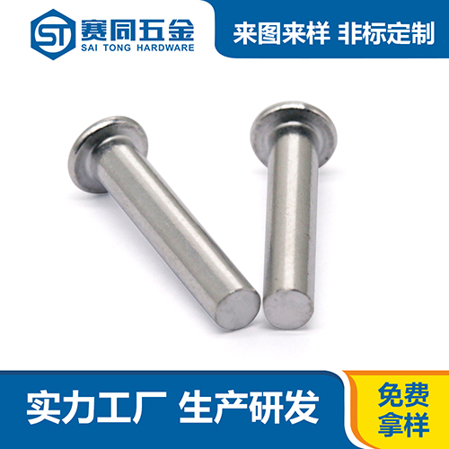 广东销售实心铝铆钉 东莞市赛同五金制品供应