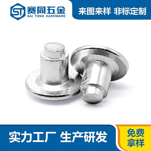广东不锈钢平头台阶铆钉制造商
