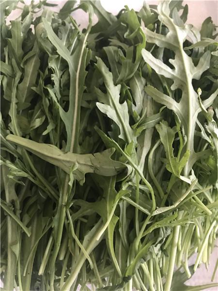 吴江区专业西餐配菜多少钱 苏州禾子生态食品供应