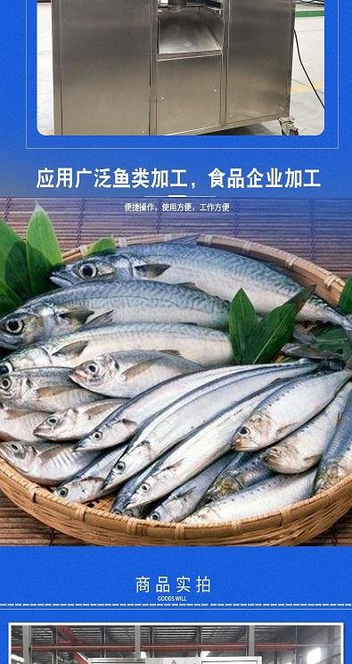 广东自动去鱼头机制造厂家 推荐咨询 安徽三艾斯机械科技供应