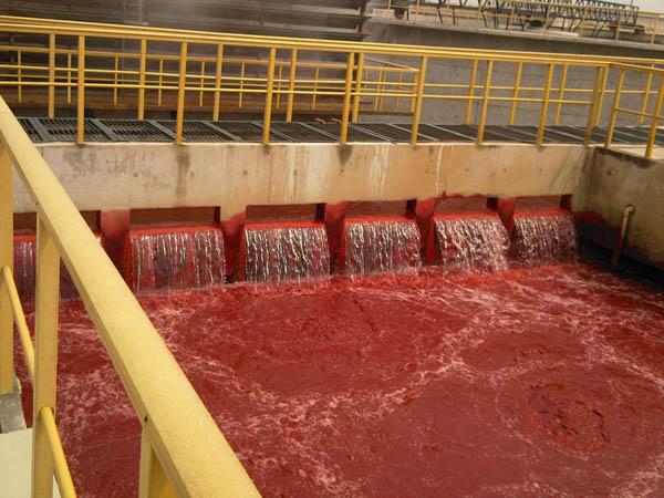 上海废水处理哪家强 值得信赖 无锡绿禾盛环保科技供应