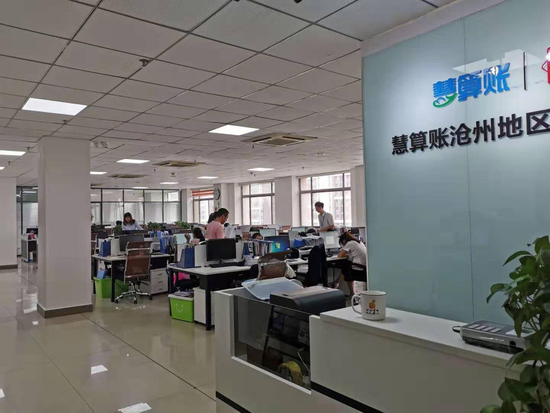 沧县专业记账报税公司,记账报税