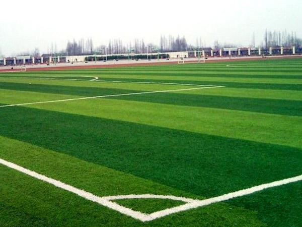 安徽正规足球场人造草坪上门维修 承诺守信「上海师羽工业科技供应」