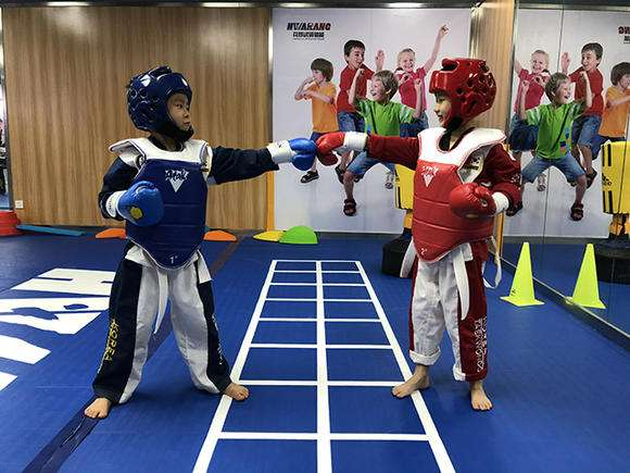 济南专业跆拳道体适能「忠义体育产业发展供应」