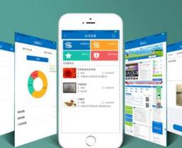 锦州执法APP 南京德世伟业软件技术供应