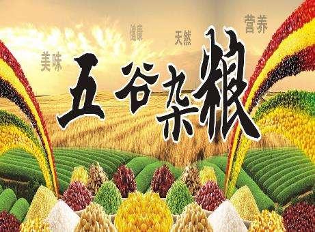 青岛杂粮平衡餐多少钱 诚信经营「山东贺拉帝生物科技供应」