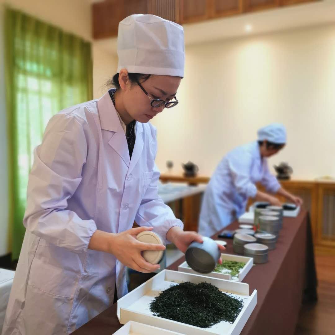 克拉玛依怎么学茶艺 天山区田雨茶道