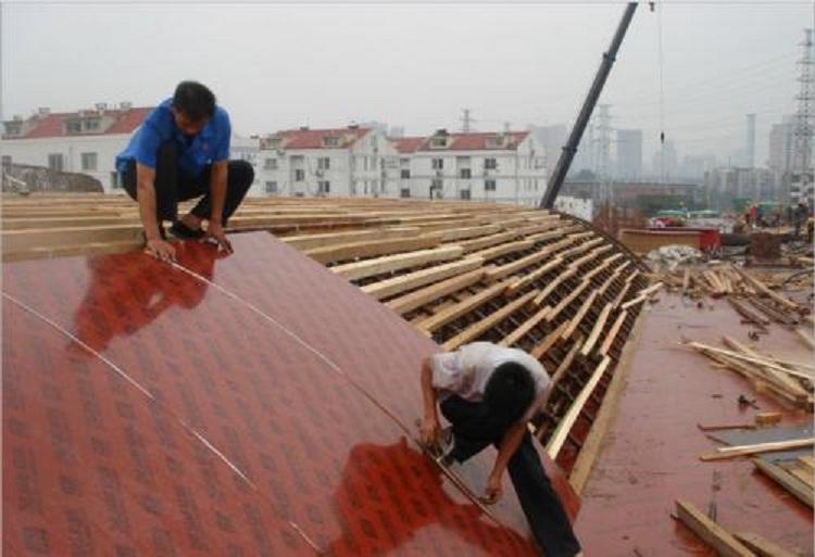 开封桥梁多层板哪家好 服务为先 百顺木业供应