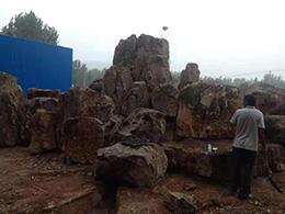 山东庭院雪浪石批发 客户至上「费县瑞林园林绿化供应」