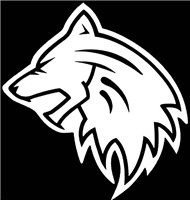 战狼保安服务集团有限公司