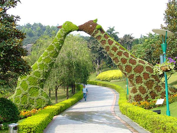 石家庄五色草造型生成厂家 铸造辉煌「河南彩景园艺供应」