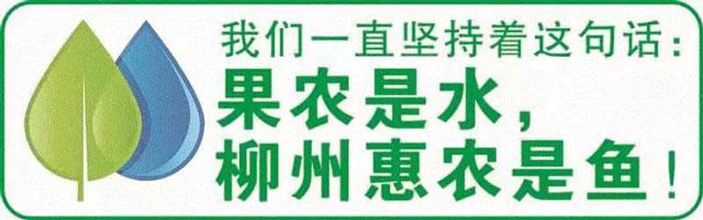 桂林不知火修剪技术解决方案 欢迎咨询 惠农化工供应