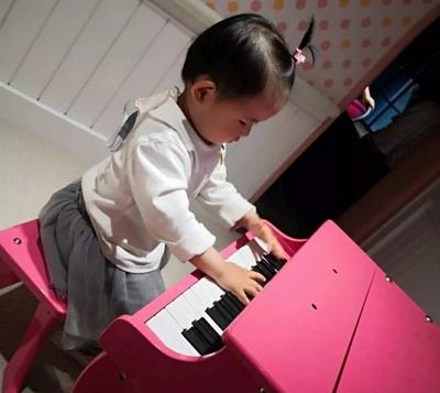 上海室內樂園設備 抱誠守真 上海徐甸玩具供應
