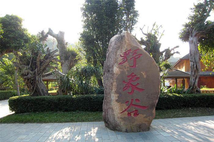 广州去西双版纳旅游景点,西双版纳