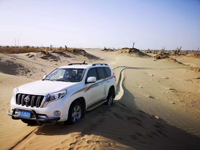 克拉玛依专业新疆旅游便宜 卓越服务 华创智行供应