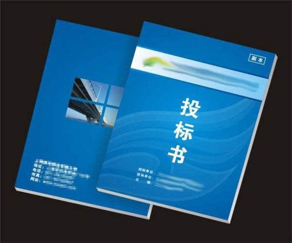 苏州优质代买标书常用指南 苏州银算盘企业管理咨询供应