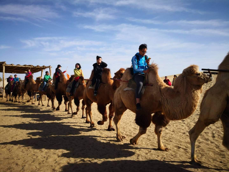 新疆乌市车价位多少 诚信互利 运通行供应