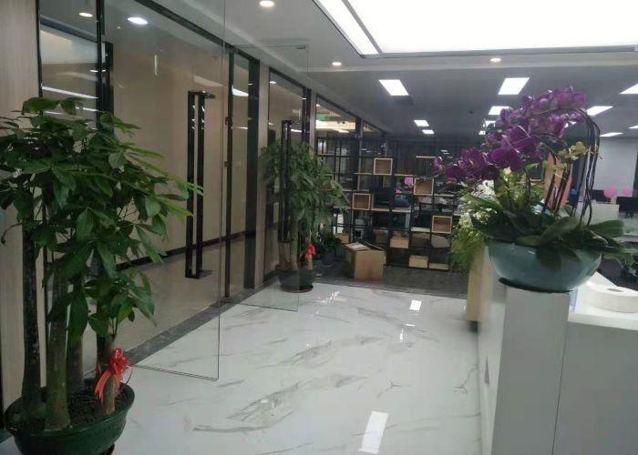 广东优质植物租赁制造厂家,植物租赁