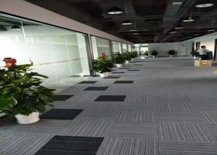 销售植物租赁厂家 诚信互利「深圳市绿园轩园林花卉供应」