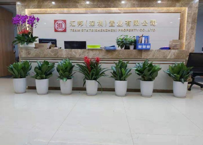 盐田区口碑好花卉租赁销售电话 抱诚守真「深圳市绿园轩园林花卉供应」