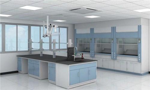 江苏药品实验室设计洁净房 上海临进实验室设备供应