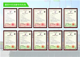 发酵饮品厂家「江苏菌钥生命科技发展供应」