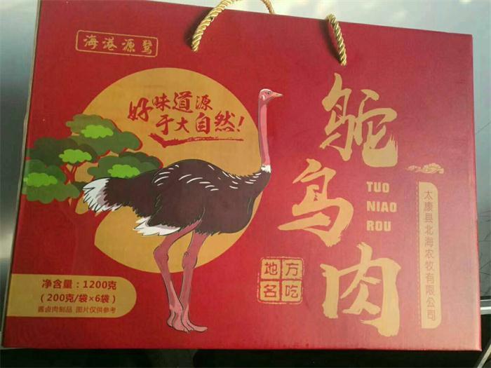 周口鸵鸟苗企业 服务为先「太康县北海农牧供应」