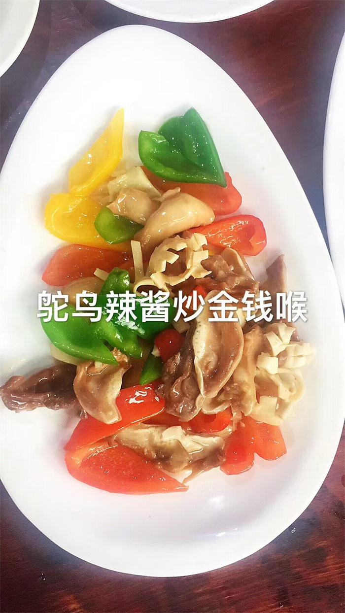 周口鸵鸟肉找哪家 服务至上「太康县北海农牧供应」