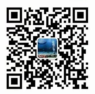 上海领都仪表科技有限公司