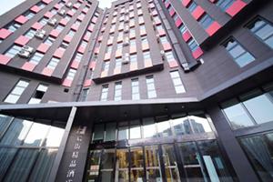 上海城周边优质中档酒店环境好 优质推荐 伊宁市后街精品大酒店供应