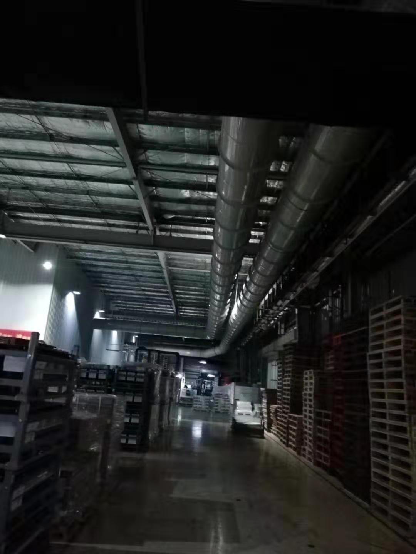 广东优良废气处理设备制造厂家 深圳市鑫萍杰环保设备供应