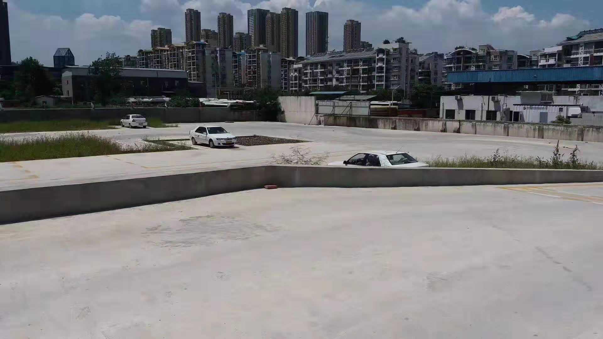杨园街道正规驾照哪家强,驾照