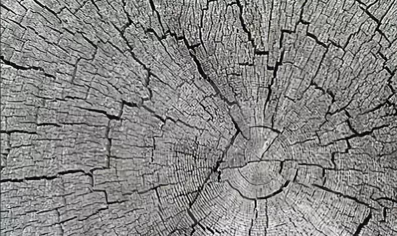 楚雄木制品加工厂家,木制品加工