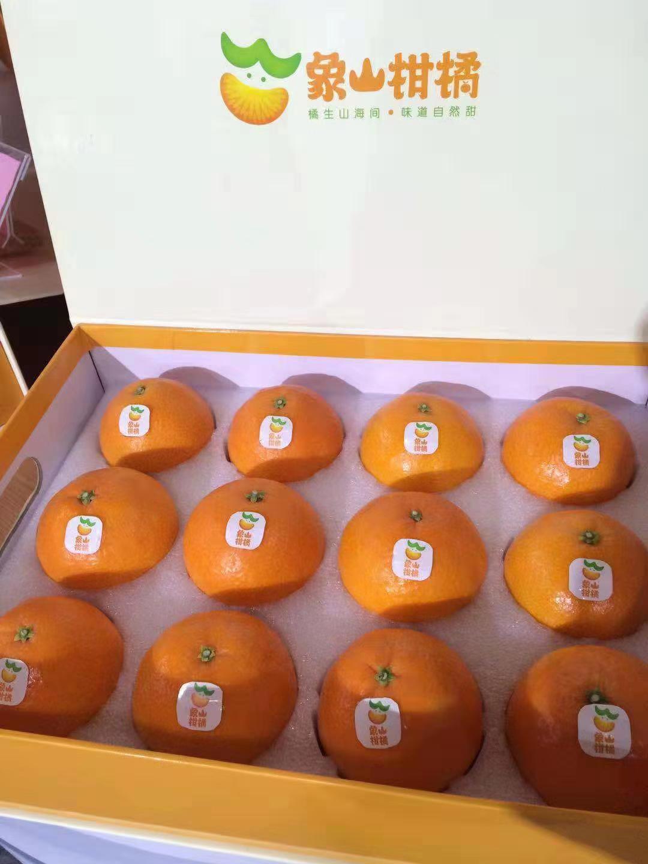 象山柑橘哪家好,象山柑橘