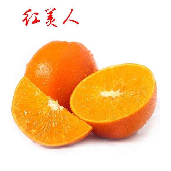 象山红美人柑橘值得信赖,象山红美人柑橘