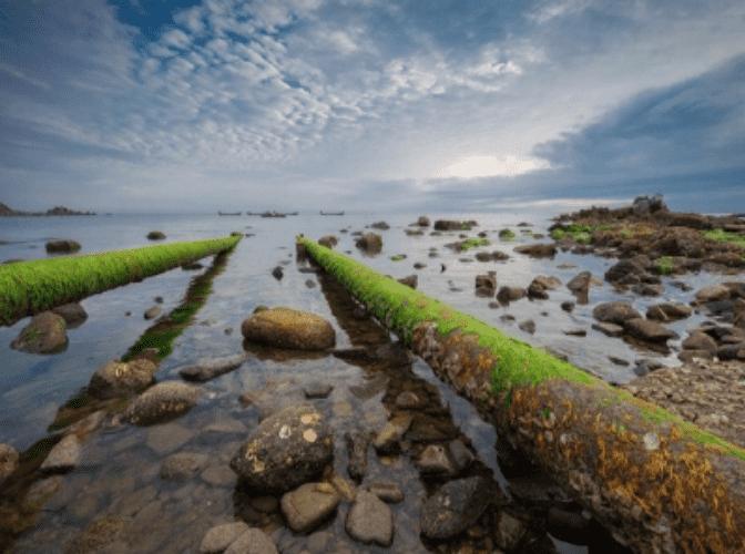 福建专业环保设备诚信企业 有口皆碑「潍坊绿丰环保科技供应」