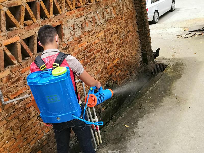 厦门学校苍蝇防治方法 值得信赖 厦门立消净生物科技供应