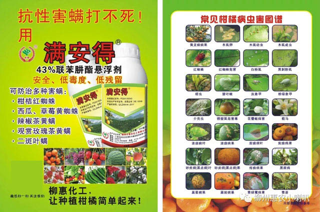 重庆密橙红蜘蛛解决方案 欢迎咨询 惠农化工供应